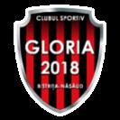 CS Gloria 2018 Bistrita Nasaud