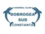 HC Dobrogea Sud Constanta