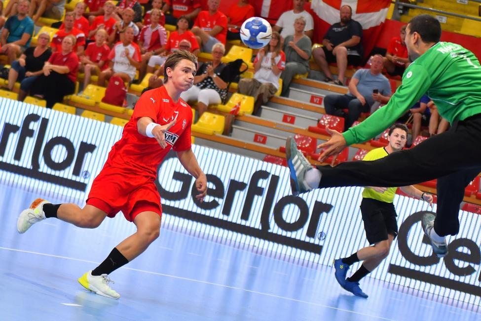 Denmark vs Tunisia