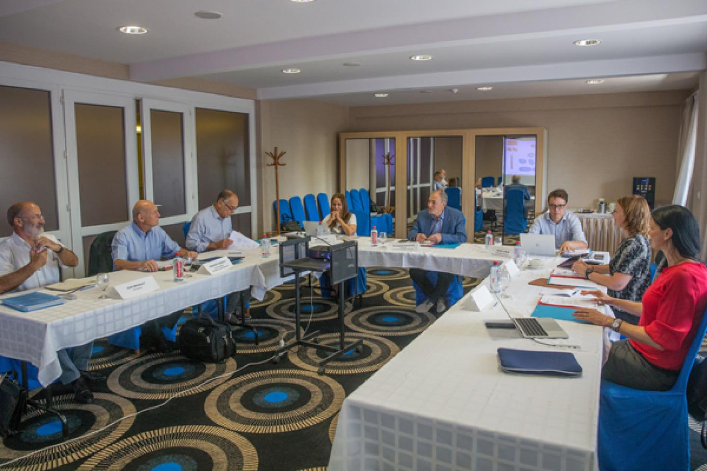 IHF Executive Committee meets in Debrecen